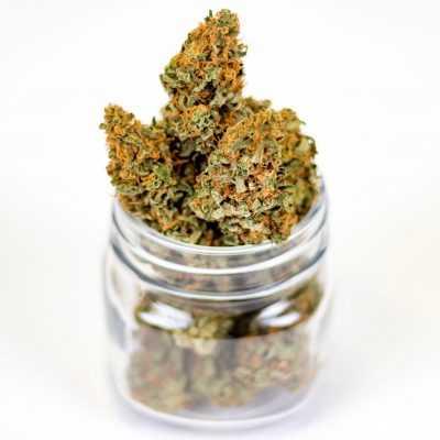 Marijuana Weed Cannabis CBD